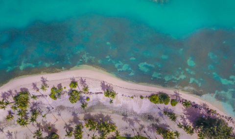 Monitoreo bacteriológico de playas y lagunas