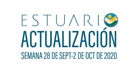Actualización por parte del Equipo del Estuario (semana 28 de sept.-2 de oct. de 2020)