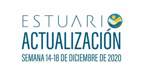Actualización por parte del Equipo del Estuario (semana 14-18 de diciembre de 2020)