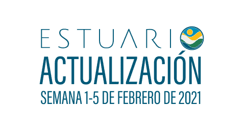 Actualización por parte del Equipo del Estuario (semana 1-5 de febrero de 2021)