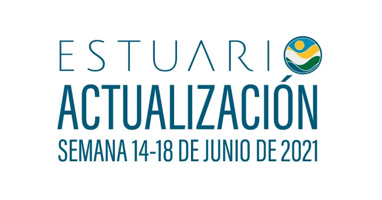 Actualización por parte del Equipo del Estuario (semana 14-18 de junio de 2021)
