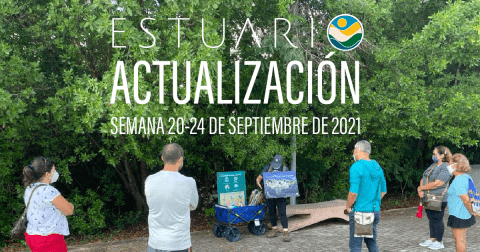 Actualización por parte del Equipo del Estuario (semana 20-24 de septiembre de 2021)