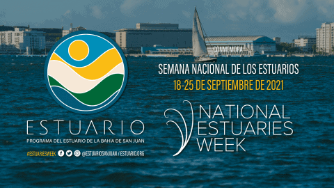 Celebra la Semana Nacional de los Estuarios 2021