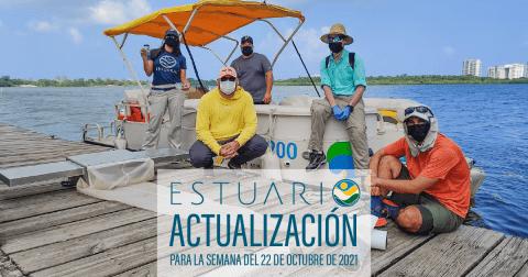 Actualización por parte del Equipo del Estuario (semana 18-22 de octubre de 2021)
