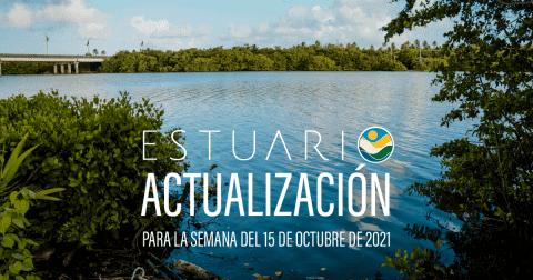 Actualización por parte del Equipo del Estuario (semana 11-15 de octubre de 2021)